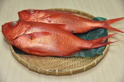 金目鯛 (キンメダイ) ✈
