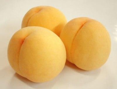黃金桃 ✈